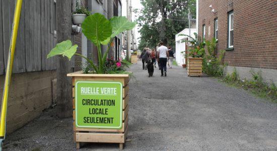 Étude en ligne : les enjeux de sécurité ressentis dans les ruelles du Vieux-Limoilou