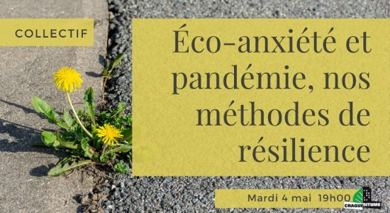 Collectif: Éco-anxiété et pandémie, nos méthodes de résilience