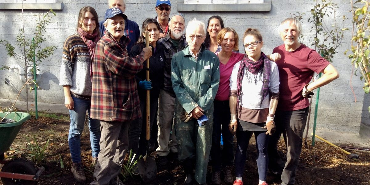 Verdir Saint-Roch : des arbres et une nomination au Prix Action David Suzuki | 24 novembre 2017 | Article par Stéphanie Vincent