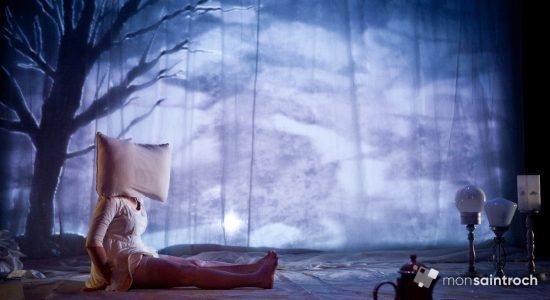 Un nouveau spectacle pour Les Incomplètes en 2019 - Véronique Demers