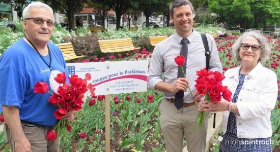 Des tulipes rouges pour sensibiliser au Parkinson - Véronique Demers