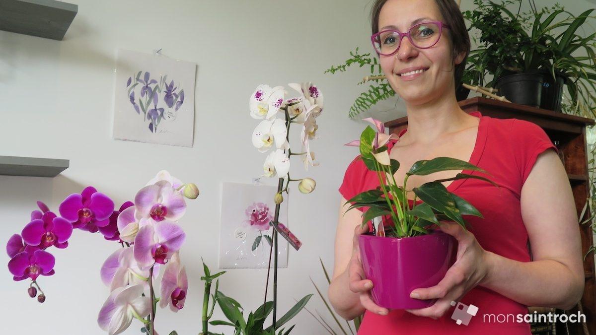 WenDIY : tout feu tout fleur dans Saint-Roch! | 9 août 2018 | Article par Véronique Demers