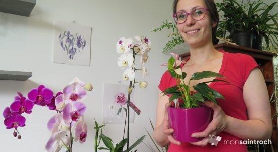 WenDIY : tout feu tout fleur dans Saint-Roch! - Véronique Demers