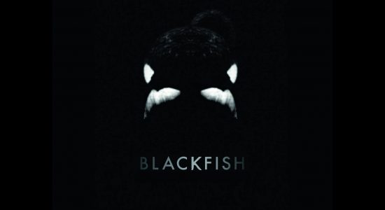 Éco-Cinoche: Blackfish