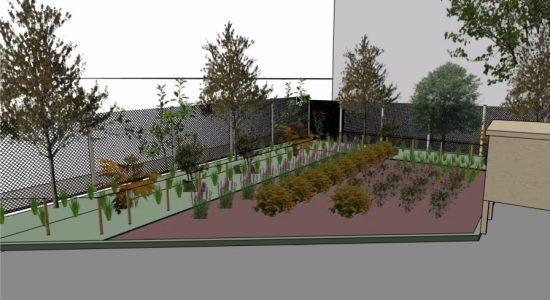 Deux nouvelles oasis urbaines dans Saint-Roch - Véronique Demers