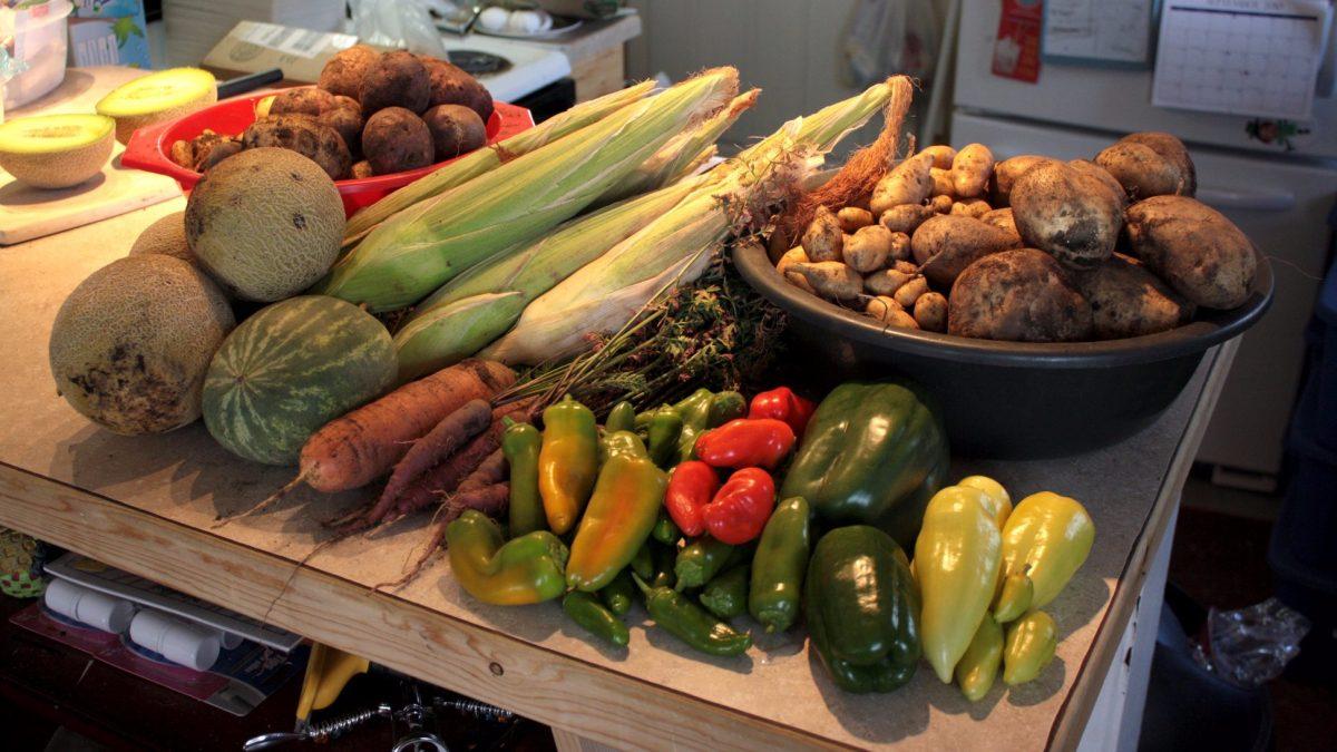 Un marché solidaire à St-Roch cet été! | 11 juin 2020 | Article par Amélie Légaré