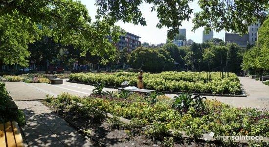 Jardin Jean-Paul-L'Allier. 7 août 2020.
