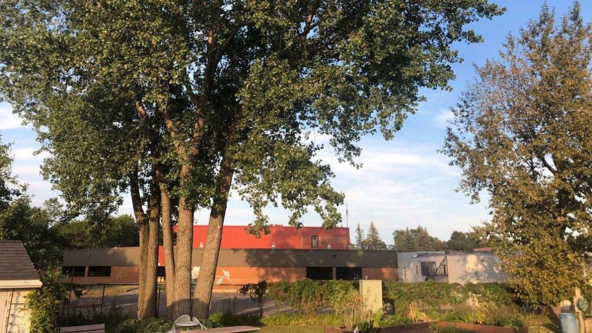 Des arbres coupés pour créer des stationnements | 9 septembre 2021 | Article par Julie Rheaume